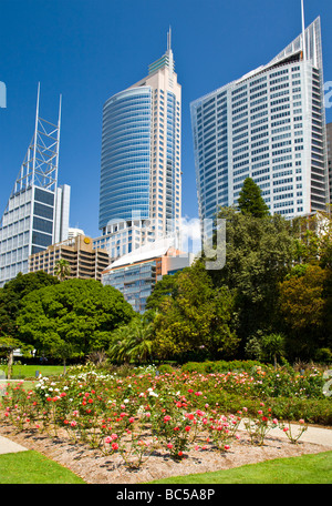 Royal Botanic Gardens Sydney with the building of the CBD in the background Australia - Stock Photo