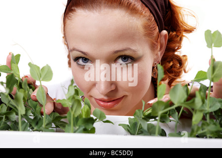 Young girl taking care of garden pea - Stock Photo