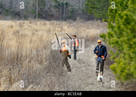 Upland Bird Hunters Guide and English Pointer in Field at Buckeye Plantation in the Piney Woods of Georgia - Stock Photo