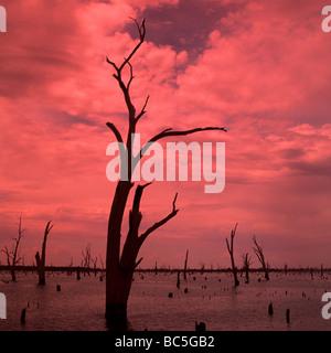 Lake Mulwalla Sunrise,Victoria,Australia. - Stock Photo