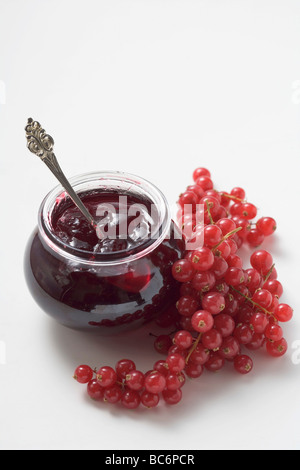 Jar of redcurrant jelly and fresh redcurrants - - Stock Photo