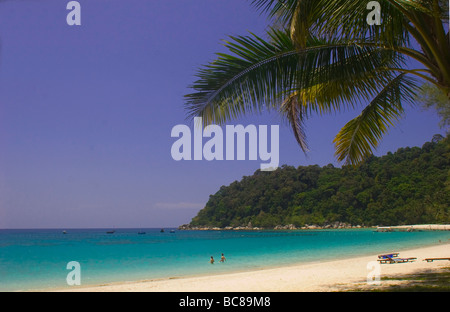 White sandy beach lined with palmtrees on Perhentian Islands - Stock Photo