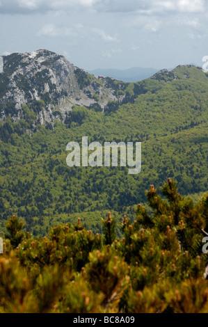 View of  Risnjak peak and mountain hut Schlosserov dom in Risnjak National Park part of Gorski kotar in Croatia, - Stock Photo
