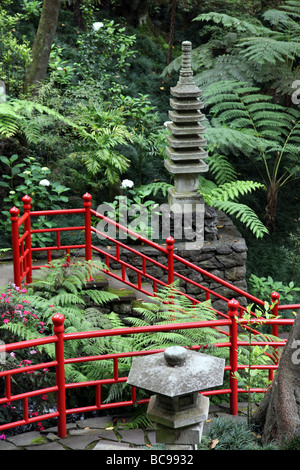 Japanese garden, Monte Palace Tropical Garden Monte Madeira - Stock Photo