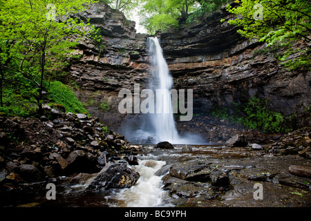 Hardraw Force reputed Englands highest freefall waterfall upper Wensleydale Yorkshire Dales National Park - Stock Photo