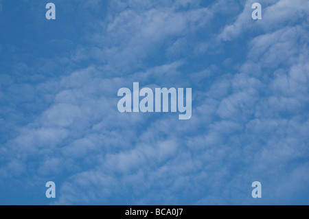 Delicate fluffy cotton wool clouds against a blue sky. - Stock Photo