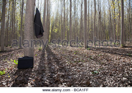Suit and briefcase in forest - Stock Photo