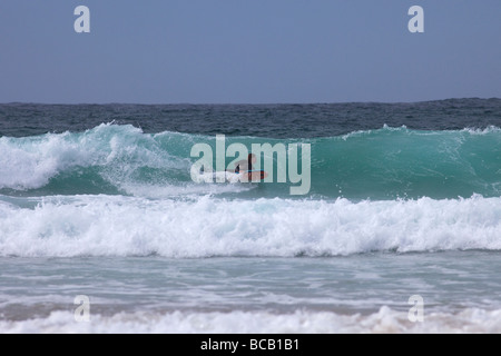 Surfing waves on bodyboard Porthmeor beach in summer sun St Ives Cornwall England UK United Kingdom GB Great Britain - Stock Photo