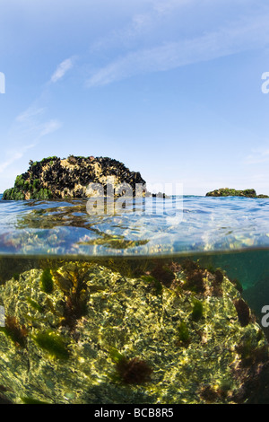 Above and below the sea off Porthmeor beach in summer St Ives Cornwall England UK United Kingdom GB Great Britain - Stock Photo