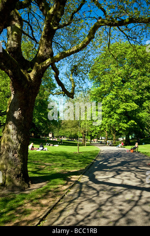 Crowds of people enjoying the hot weather in Western Park,Sheffield ,South Yorkshire ,England UK - Stock Photo
