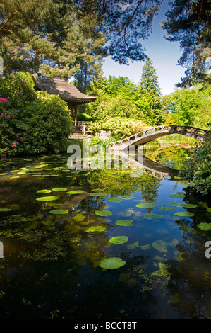 The Japanese Garden at Tatton Park, Near Knutsford, Cheshire, England, UK - Stock Photo