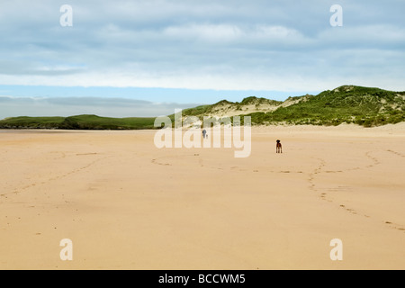 Sandy beach and bay of Balnakeil Bay, Durness, Sutherland in Scotland with man walking dogs in the distance - Stock Photo