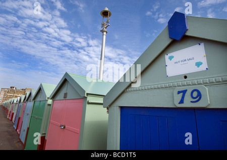 Beach Hut number 79 for sale on Hove lawns promenade in the City of Brighton and Hove East Sussex UK - Stock Photo