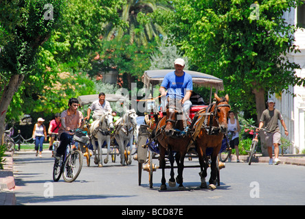 ISTANBUL, TURKEY. Horses and bicycles on the Princes' Island of Buyukada in the Sea of Marmara. 2009. - Stock Photo