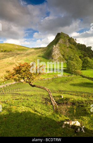 Parkhouse Hill from Chrome Hill, Peak District National Park, Derbyshire, England, UK - Stock Photo