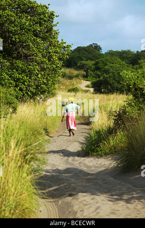 Mozamique, Inhaca Island. A Mozambique lady carries her hoe after working in the fields on Inhaca Island in Mozambique. - Stock Photo
