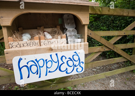Eggs for sale - Stock Photo