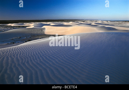 Wind whips sand across the surface of a rippled dune after sunset. - Stock Photo