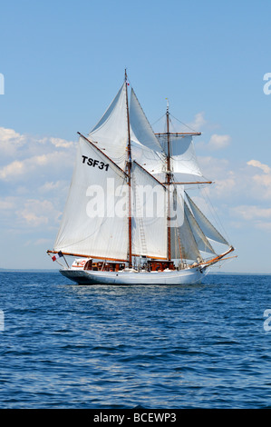 French Tall ship schooner Etoile under full sail in Buzzards Bay Cape Cod - Stock Photo