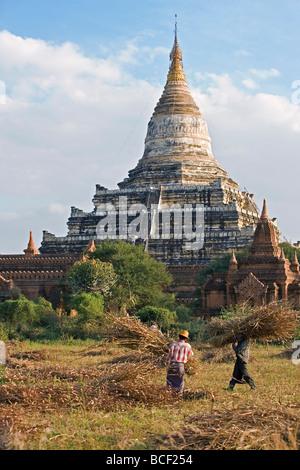 Myanmar. Burma. Bagan. The ancient Buddhist stupa of Shwesandaw on the central plain of Bagan. - Stock Photo