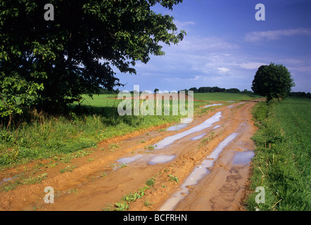 Loess Road , Soil , Roztocze Region Poland , Country Road Stock Photo