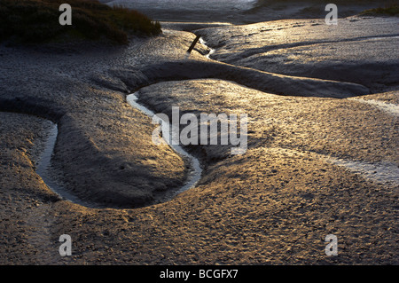 Detail of patterns in the mud at the Saltmarshes at Wells next the Sea on the North Norfolk Coast - Stock Photo