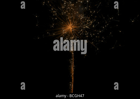 Fireworks - 'Golden Flower' - Stock Photo