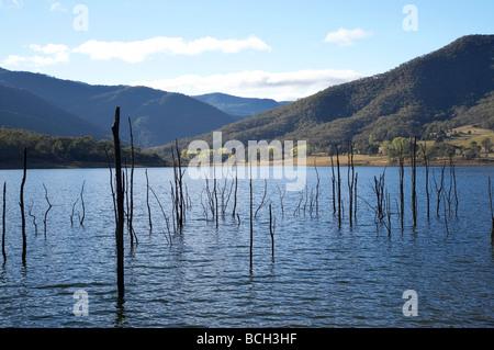 Drowned Trees Jounama Pondage Snowy Mountains New South Wales Australia - Stock Photo
