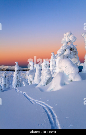 Scenic sunrise in winter with ski tracks in the foreground Wrangell Island Southeast Alaska - Stock Photo