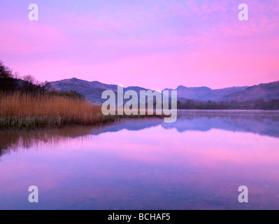 England, Cumbria, Lake District NP, view at dawn over Elter Water to Langdale Pikes - Stock Photo