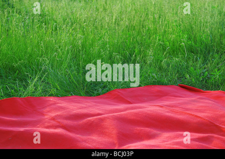 Summer field as resting place - Stock Photo