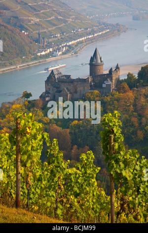 Burg Stahleck & Vineyard, Bacharach, Rhine Valley, Germany, RF - Stock Photo