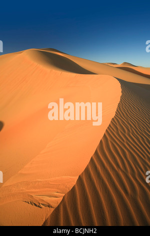 United Arab Emirates, Liwa Oasis, Sand dunes near the Empty Quarter Desert - Stock Photo