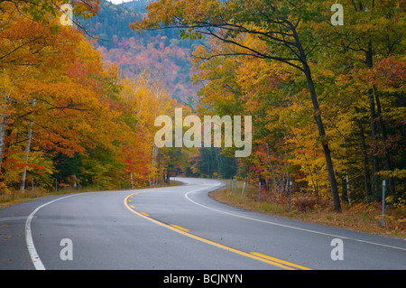 USA, New Hampshire, White Mountain National Park, Kankamagus Highway - Stock Photo