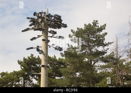 Mobile Phone Mast Disguised As A Tree to Blend Into The Countryside - Stock Photo
