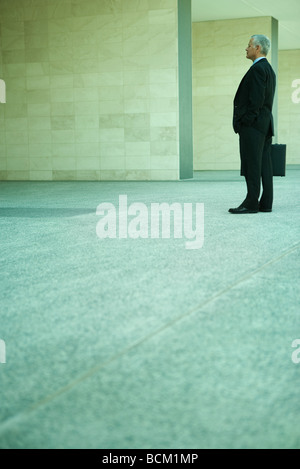Businessman standing, holding briefcase, full length, side view - Stock Photo