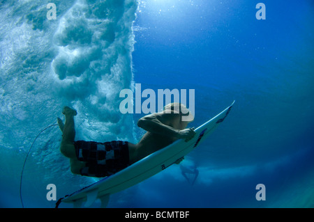 Duck diving under wave - Stock Photo