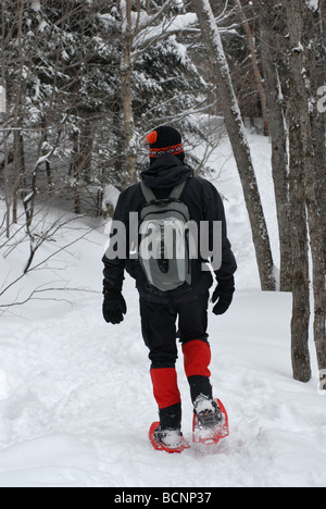 man walking in snowshoes - Stock Photo