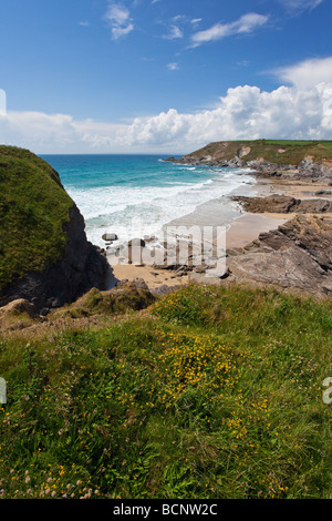 Gunwalloe Dollar Cove on sunny summers day blue sky sunshine Lizard Peninsula Cornwall England UK GB United Kingdom - Stock Photo