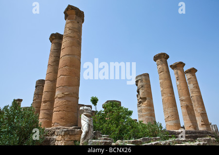 Libya archaeological site of Cyrene the Apollo temple - Stock Photo