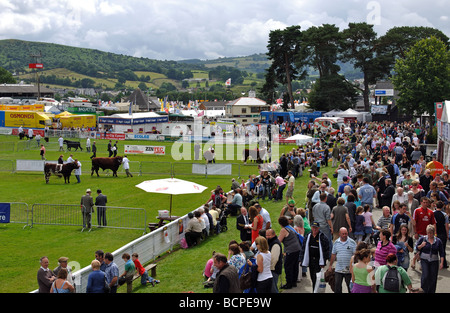 The Royal Welsh Show, Builth Wells, Powys, Wales, UK - Stock Photo