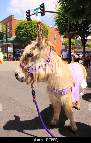 Zippy The Animal Shelter Fundraising Burrow Leaf and String Festival Galax Virginia - Stock Photo