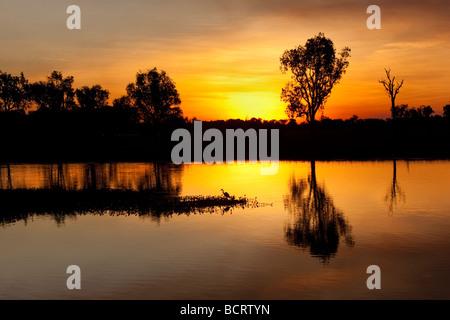 An egret fishing at sunset at Yellow Water billabong, Kakadu National Park - Stock Photo