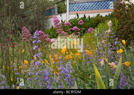 Nice ... Amy Stewart S Front Yard No Lawn Flowering Perennial Garden   Stock  Photo