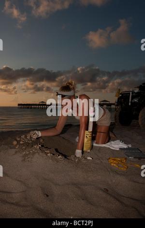Biologist Kelly Martin excavates a leatherback sea turtle nest - Stock Photo