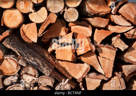 Stack Of Firewood Logs - Stock Photo