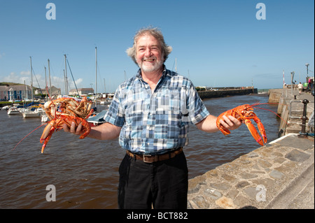 A local fisherman with fresh local crab and lobster at The 2009 Cardigan Bay Seafood festival Aberaeron Ceredigion - Stock Photo