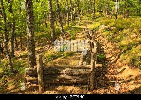 Breastworks along Confederate Breastworks Interpretive Trail Shenandoah Mountain West Augusta Virginia - Stock Photo