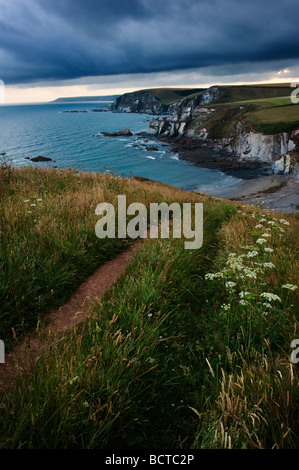View looking northeast from the coast path above Ayrmer Cove South Devon England UK - Stock Photo