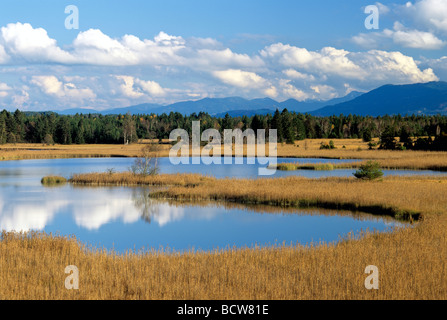 Grosser Gartensee lake, Osterseen lakes in Seeshaupt, Upper Bavaria, Bavaria, Germany, Europe - Stock Photo
